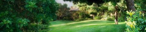 Weston super Mare Gardening Services